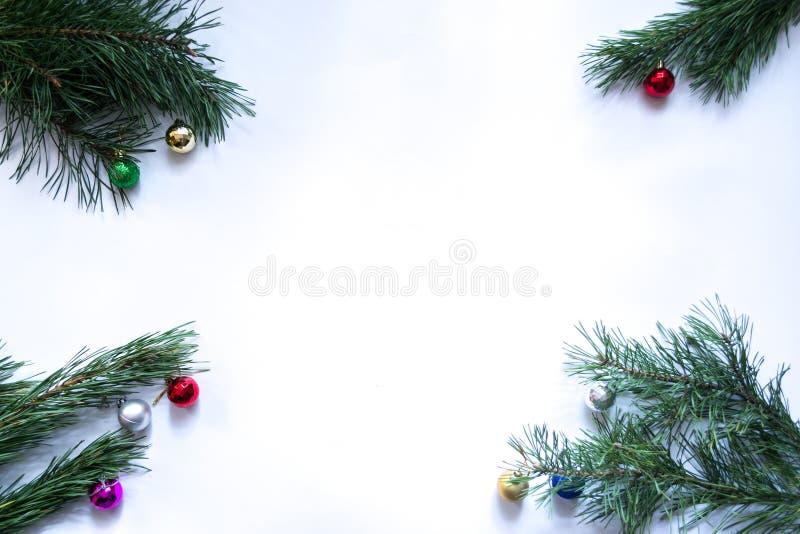 Κλάδοι χριστουγεννιάτικων δέντρων σε ένα άσπρο υπόβαθρο στοκ εικόνα με δικαίωμα ελεύθερης χρήσης