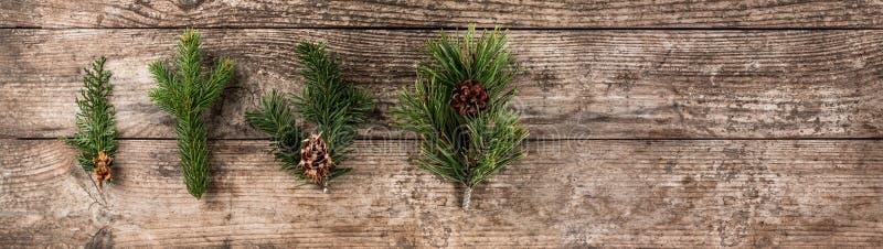 Κλάδος έλατου Χριστουγέννων, ερυθρελάτες, ιουνίπερος, έλατο, αγριόπευκο, κώνοι πεύκων στο ξύλινο υπόβαθρο Χριστούγεννα και νέο θέ στοκ φωτογραφία με δικαίωμα ελεύθερης χρήσης
