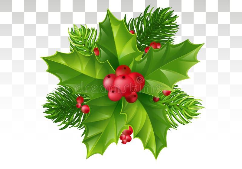 Κλάδος δέντρων πεύκων, φύλλα της Holly και κόκκινο μούρο Χριστούγεννα decorat απεικόνιση αποθεμάτων