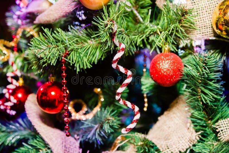 Κλάδος ενός χριστουγεννιάτικου δέντρου με τη διακόσμηση στοκ φωτογραφίες με δικαίωμα ελεύθερης χρήσης