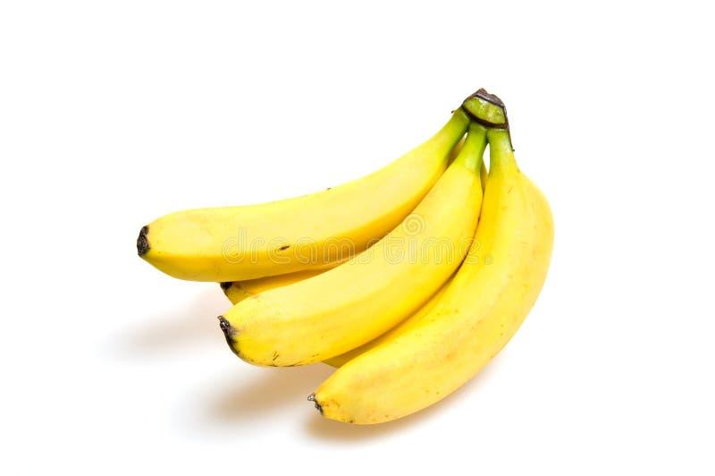 κλάδος μπανανών στοκ φωτογραφίες με δικαίωμα ελεύθερης χρήσης