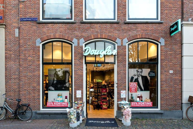 Κλάδος Ντάγκλας σε Sneek, οι Κάτω Χώρες στοκ εικόνες με δικαίωμα ελεύθερης χρήσης