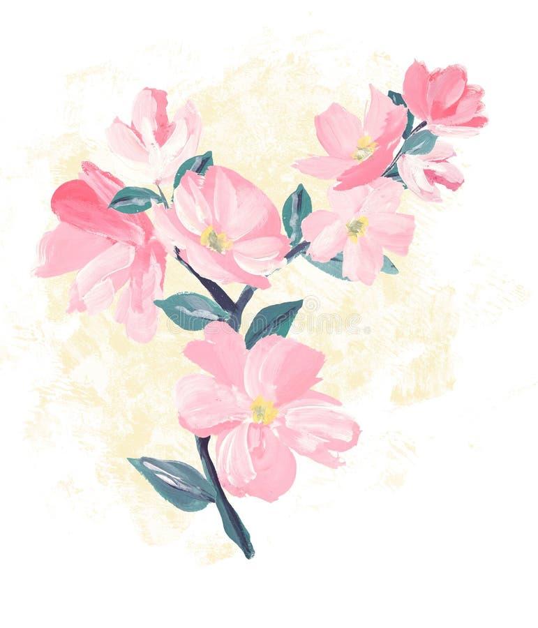 Κλάδος του ρόδινου άνθους Sakura ή του ιαπωνικού ανθίζοντας κερασιού συμβολικού της άνοιξης απεικόνιση αποθεμάτων