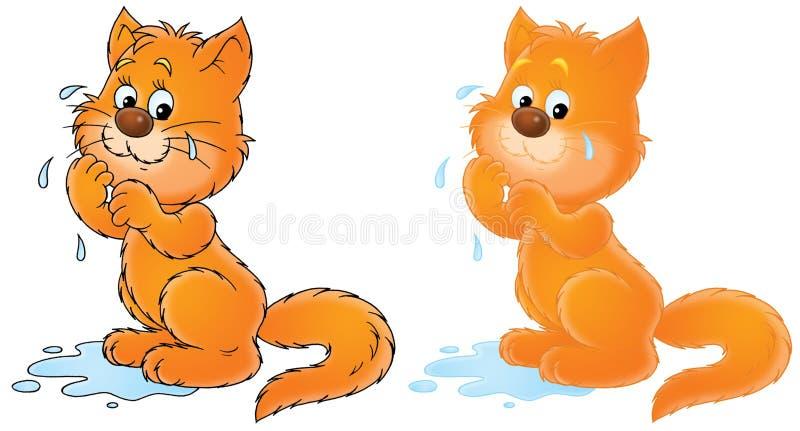 κλάμα γατών διανυσματική απεικόνιση
