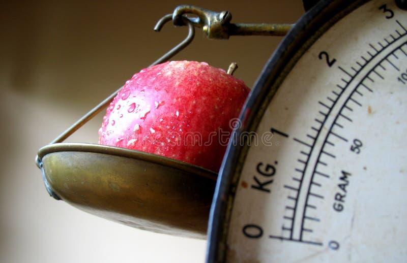 κλίμακα εστίασης μήλων Στοκ φωτογραφίες με δικαίωμα ελεύθερης χρήσης