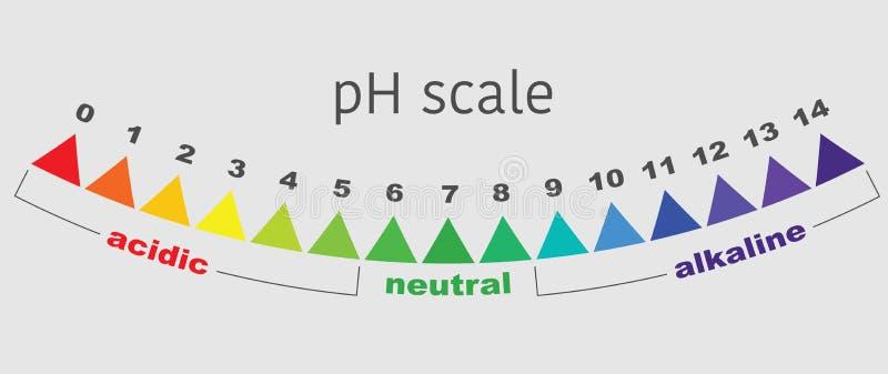 Κλίμακα της αξίας pH για τις όξινες και αλκαλικές λύσεις, διάνυσμα που απομονώνεται ελεύθερη απεικόνιση δικαιώματος