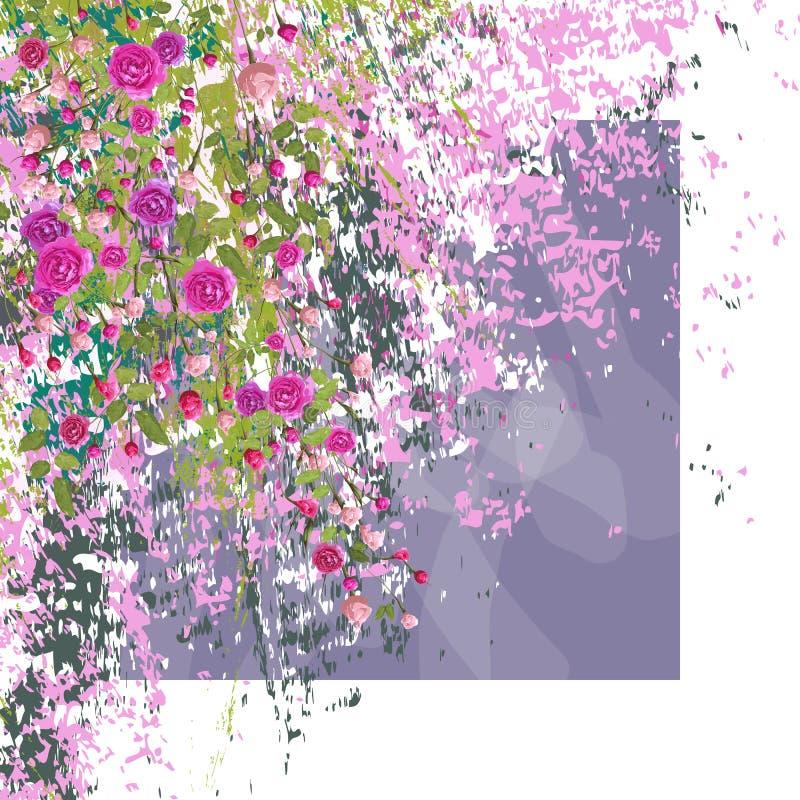 Κλαδάκια των ρόδινων τριαντάφυλλων με τα φύλλα στο κατασκευασμένο υπόβαθρο Άσπρο πλαίσιο απεικόνιση αποθεμάτων