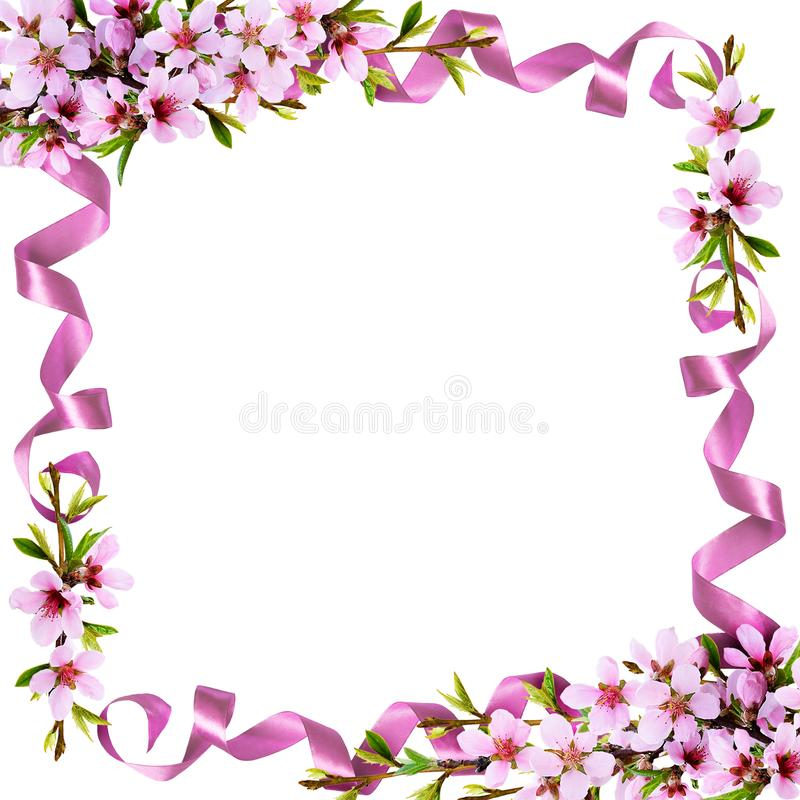 Κλαδίσκοι άνοιξη των λουλουδιών ροδάκινων και του πλαισίου κορδελλών μεταξιού διανυσματική απεικόνιση