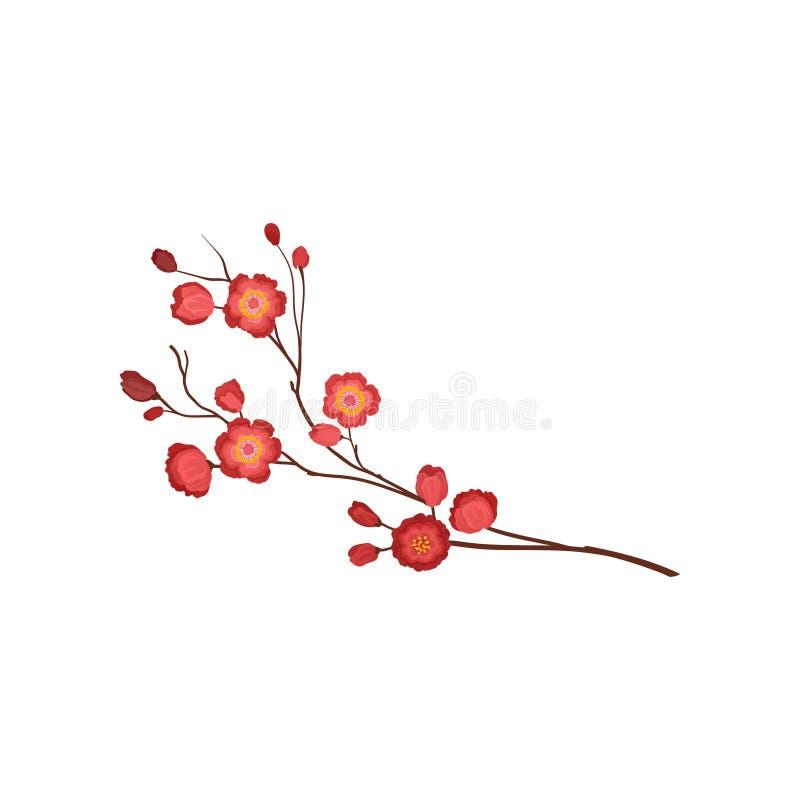 Κλαδίσκος ανθών με τα φωτεινά κόκκινα λουλούδια Κλάδος του ανθίζοντας δέντρου δαμάσκηνων Θέμα φύσης Λεπτομερές επίπεδο διανυσματι διανυσματική απεικόνιση