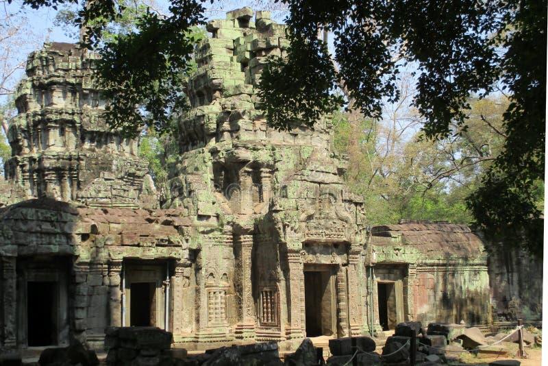 Κλασσική εικόνα ναών της Καμπότζης Angkor Wat TA Prohm στοκ εικόνα με δικαίωμα ελεύθερης χρήσης