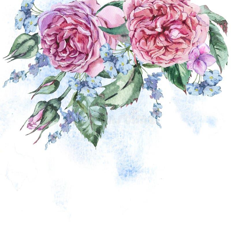 Κλασσική εκλεκτής ποιότητας Floral ευχετήρια κάρτα Watercolor, Watercolor BO διανυσματική απεικόνιση