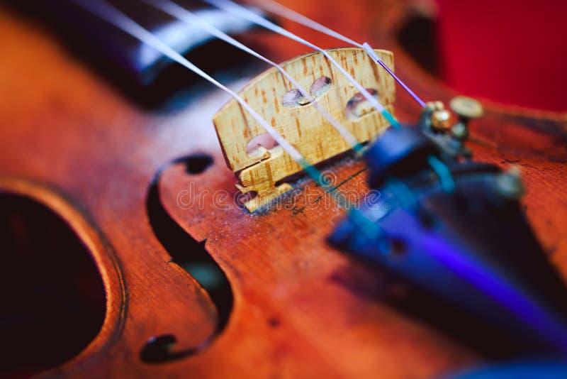 Κλείστε αυξημένος ενός βιολιού, ρηχός βαθιά του τομέα στοκ φωτογραφία