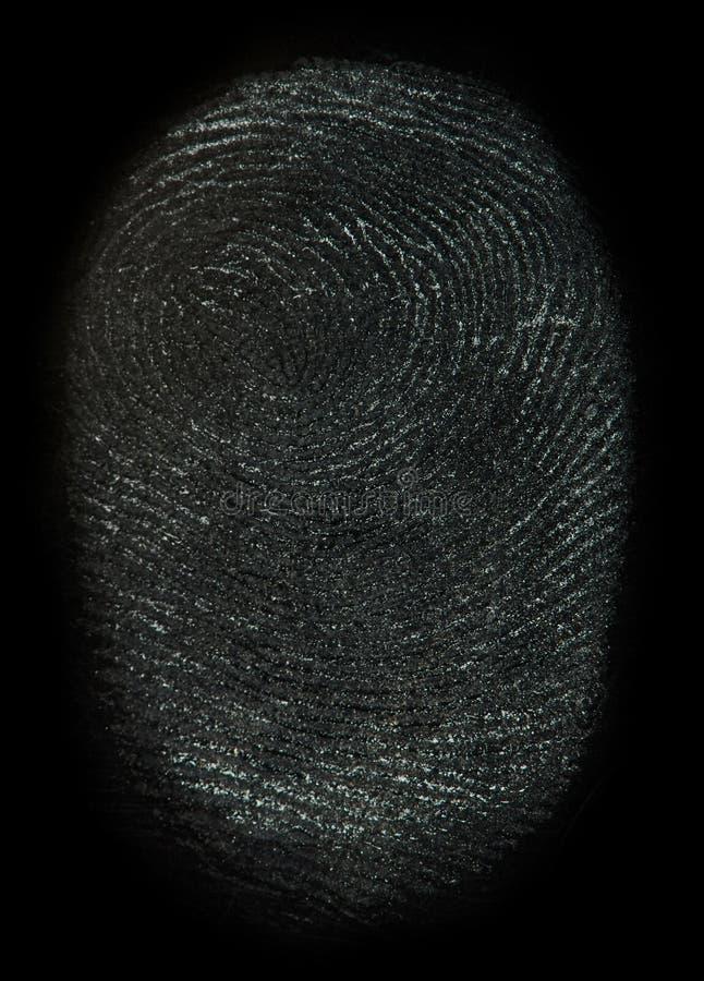 Κλείστε επάνω ενός πραγματικού δακτυλικού αποτυπώματος στοκ εικόνες με δικαίωμα ελεύθερης χρήσης