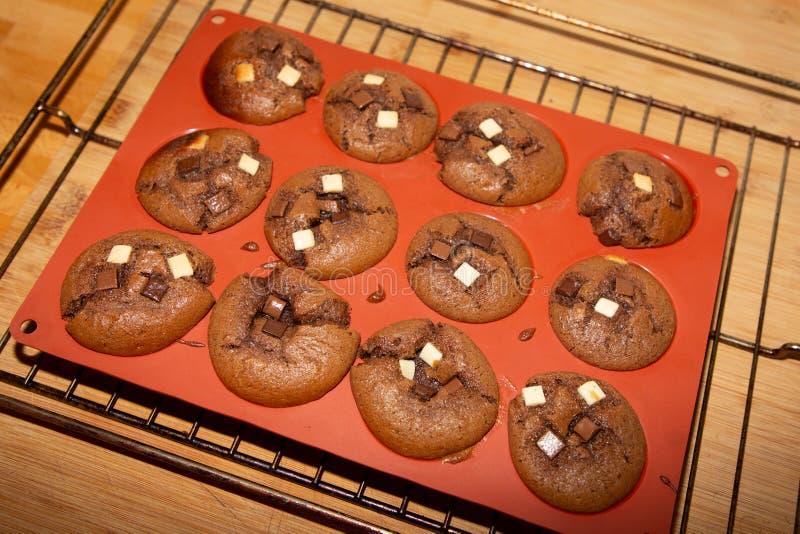 Κλείστε επάνω πρόσφατα ψημένα muffins σοκολάτας muffin στο τηγάνι στοκ εικόνα με δικαίωμα ελεύθερης χρήσης