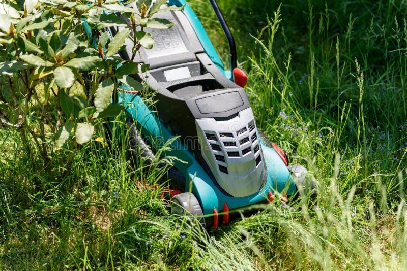 Κλείστε επάνω σε μια ηλεκτρο τέμνουσα χλόη χορτοκοπτών στον κήπο στοκ φωτογραφία