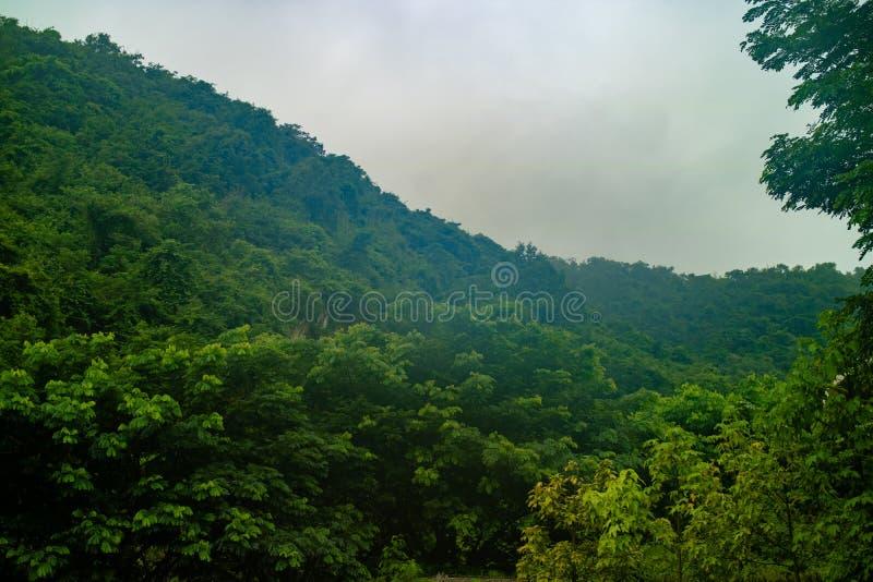 Κλείστε επάνω στο λόφο του βουνού στοκ φωτογραφίες με δικαίωμα ελεύθερης χρήσης