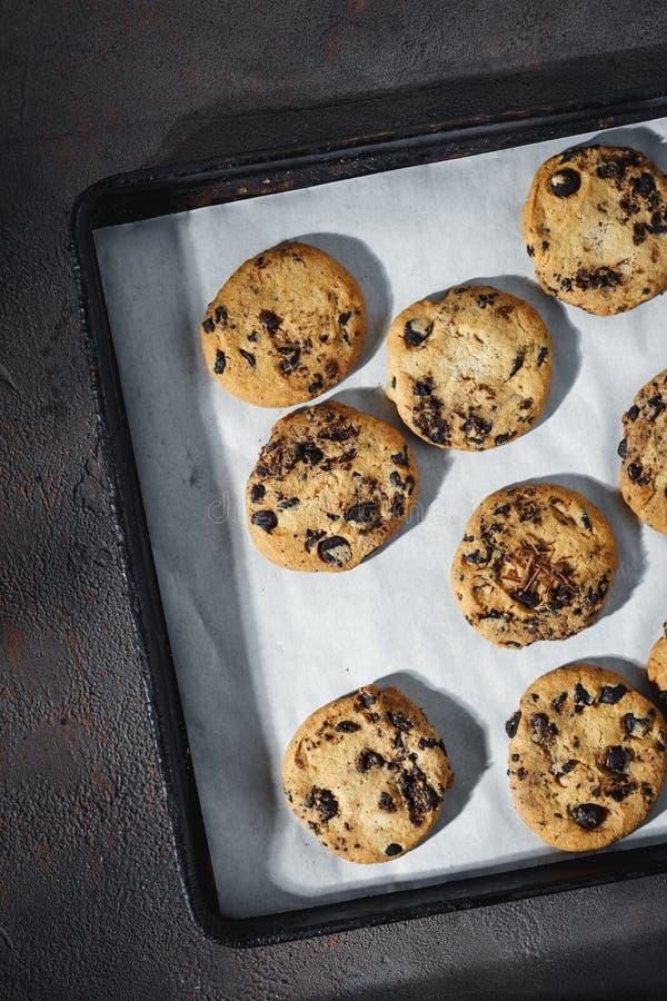 Κλείστε επάνω τα σπιτικά μπισκότα σοκολάτας ψήνοντας τη τοπ άποψη δίσκων στοκ φωτογραφία