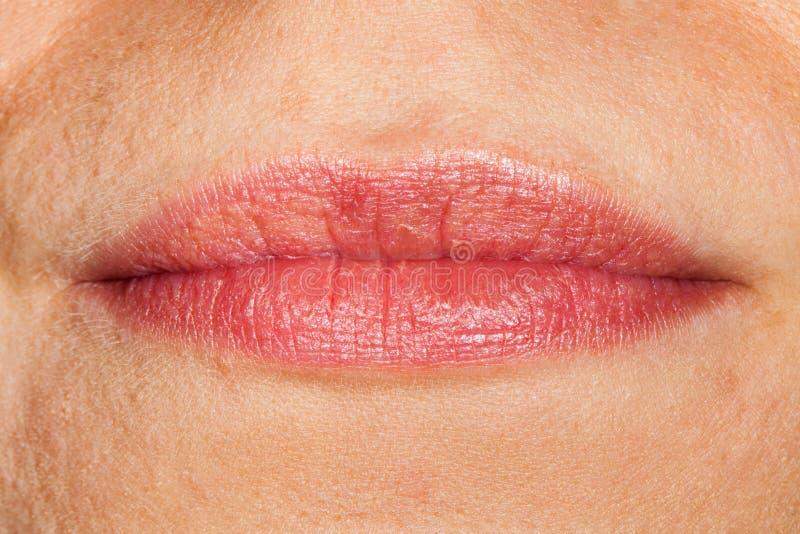 Κλείστε επάνω τα φυσικά χείλια γυναικών ` s στοκ εικόνες με δικαίωμα ελεύθερης χρήσης