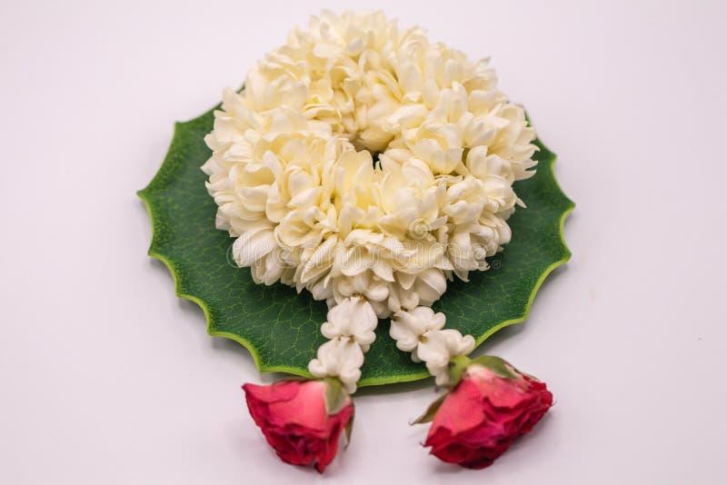 Κλείστε επάνω την εκλεκτική γιρλάντα της Jasmine εστίασης των λουλουδιών απομονώνει στο άσπρο υπόβαθρο στοκ εικόνα