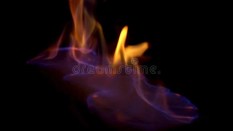Κλείστε επάνω την οριζόντια άποψη για την μπλε και κόκκινη καίγοντας πυρκαγιά, που απομονώνεται στο μαύρο υπόβαθρο Όμορφος, υπνωτ στοκ εικόνες