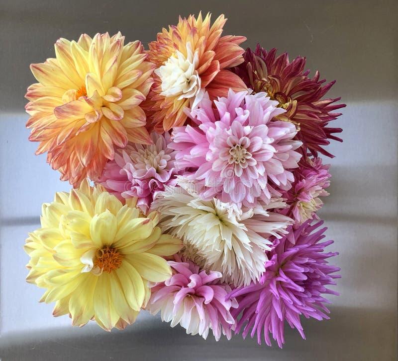 Κλείστε επάνω τη ρύθμιση λουλουδιών μιας κατάταξης των νταλιών με μια υπερυψωμένη άποψη στοκ εικόνες