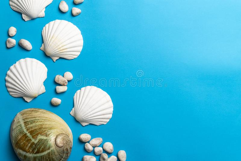 Κλείστε επάνω τη φωτογραφία των άσπρων κοχυλιών, των πετρών και του κοχυλιού φυτωρίου στοκ εικόνες με δικαίωμα ελεύθερης χρήσης