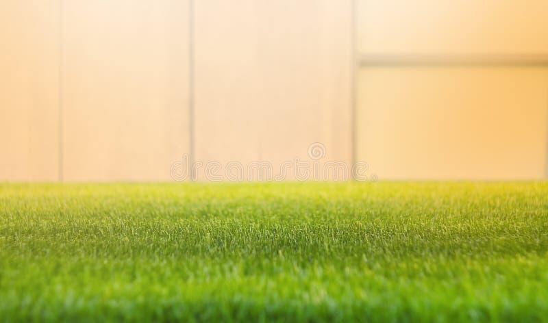 Κλείστε επάνω τον πράσινο τομέα χλόης με το υπόβαθρο τοίχων θαμπάδων Έννοια άνοιξης και καλοκαιριού, Όμορφη φύση, χρόνος ηλιοφάνε στοκ εικόνες με δικαίωμα ελεύθερης χρήσης