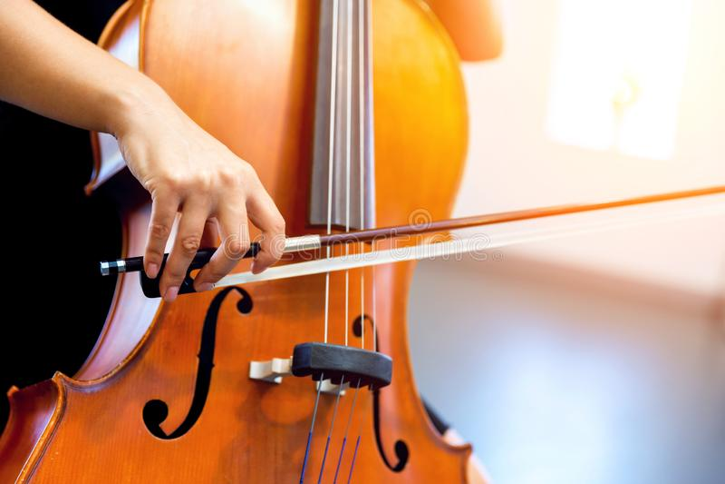 Κλείστε επάνω του βιολοντσέλου με το τόξο στα χέρια στοκ εικόνα