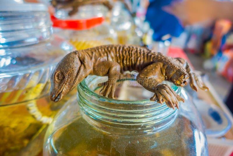 Κλείστε επάνω του νεκρού gecko πέρα από μια φιάλη ουίσκυ, που προετοιμάζεται από τους ντόπιους σε ένα νησί από την ακτή του Λάος, στοκ εικόνες