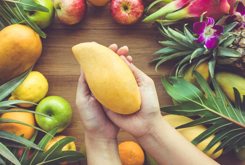 Κλείστε επάνω το θηλυκό χέρι κρατώντας το κίτρινο μάγκο στην ομάδα φρούτων στοκ φωτογραφίες