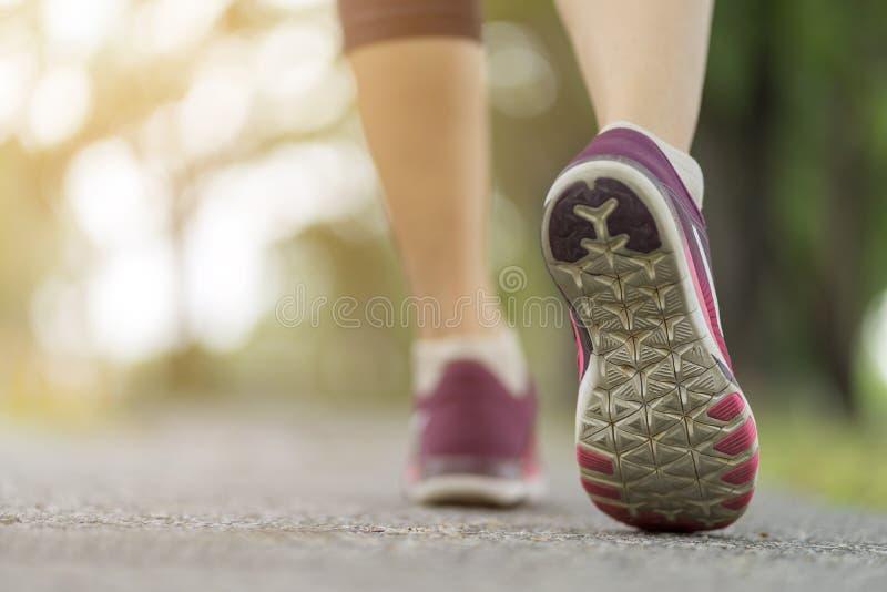 Κλείστε επάνω το παπούτσι γυναικών που τρέχει στο δρόμο, που μόνο στο πάρκο, έννοια αθλητικού υγιής τρόπου ζωής στοκ φωτογραφία με δικαίωμα ελεύθερης χρήσης