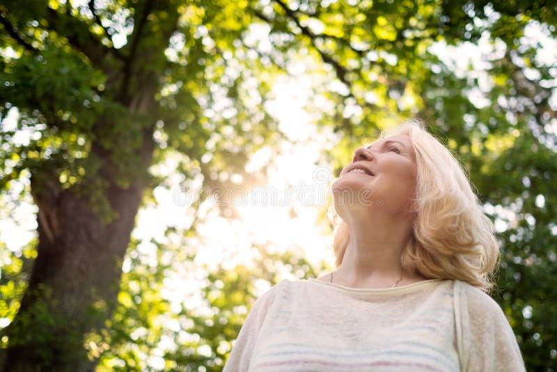 Κλείστε επάνω το πορτρέτο της ανώτερης γυναίκας από το δέντρο στοκ εικόνες