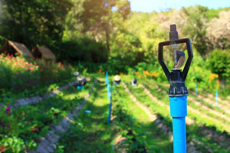 Κλείστε επάνω το σύστημα ψεκαστήρων για τη γεωργία, τον εργαζόμενο στο αγρόκτημα και τον ψεκαστήρα νερού στο φως της ημέρας στοκ εικόνες