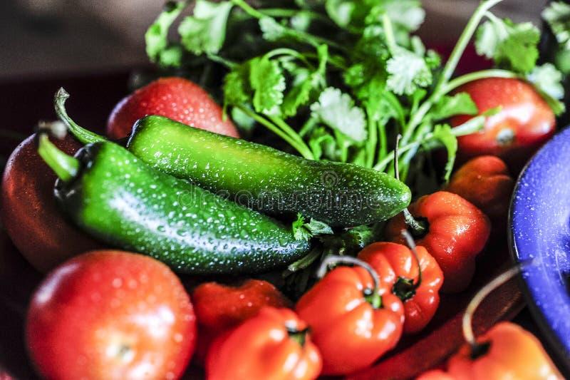 Κλείστε επάνω των ανάμεικτων λαχανικών στοκ φωτογραφία με δικαίωμα ελεύθερης χρήσης