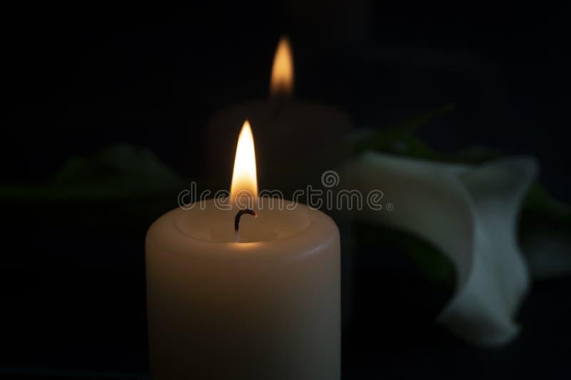 Κλείστε επάνω των πορτοκαλιών λουλουδιών φλογών και κρίνων κεριών στοκ εικόνες