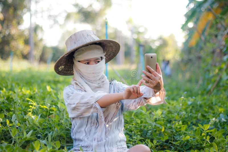 Κλείστε τον αυξημένο αγρότη χρησιμοποιώντας το κινητό smartphone στο αγρόκτημα φύσης στοκ φωτογραφίες με δικαίωμα ελεύθερης χρήσης