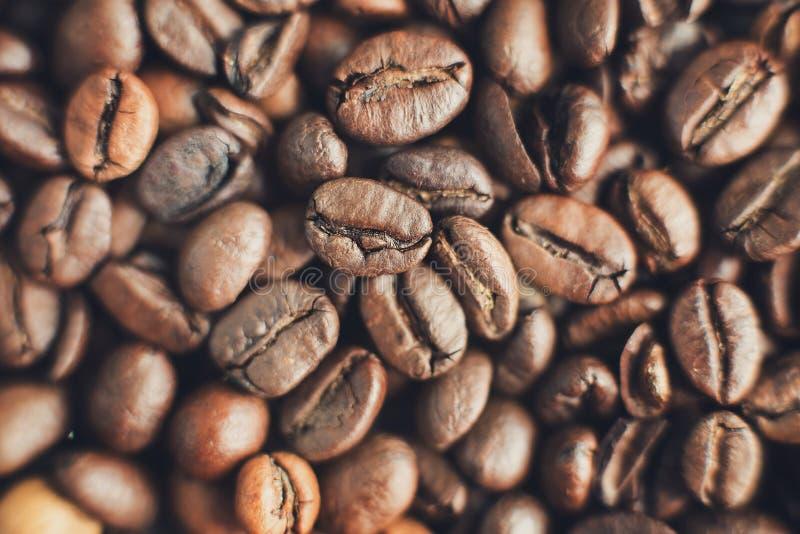 Κλείστε το επάνω ψημένο καφετί φασόλι καφέ Μακρο άποψη Εκλεκτική εστίαση στοκ εικόνες