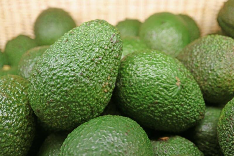 Κλειστός επάνω σωρός των πράσινων ανώμαλων ολόκληρων φρούτων αβοκάντο στο καλάθι στοκ εικόνα