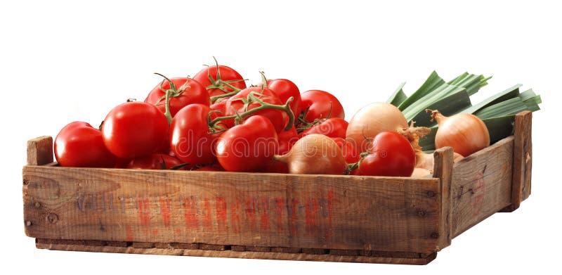 κλουβί tomatous στοκ φωτογραφία με δικαίωμα ελεύθερης χρήσης