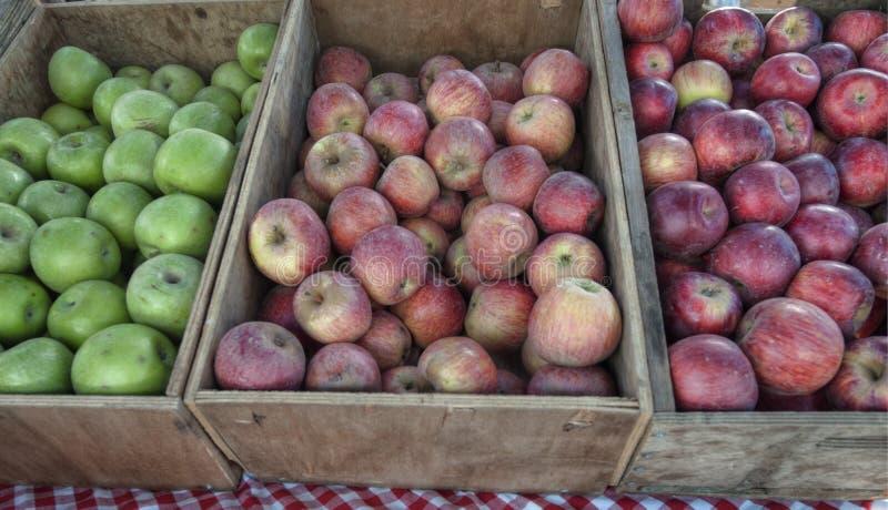 κλουβιά μήλων στοκ φωτογραφία με δικαίωμα ελεύθερης χρήσης