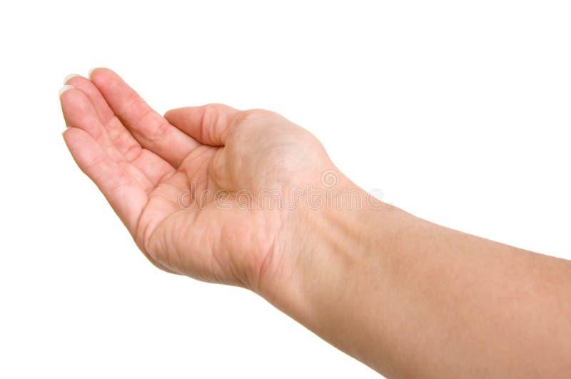 κοίλο χέρι στοκ εικόνα