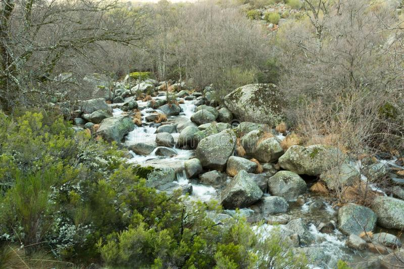 Κοίτη ποταμού του ποταμού βουνών που κατεβαίνει μεταξύ των πετρών στοκ φωτογραφία