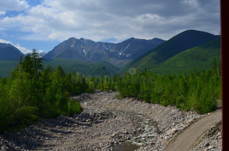 Κοίτη του ποταμού μέχρι τις βροχερές ημέρες στα σιβηρικά όρη, ηλιόλουστος summerday στοκ εικόνες