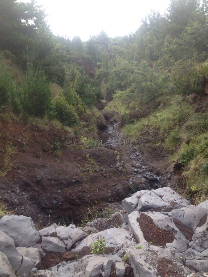 Κοίτη του ποταμού στοκ φωτογραφία με δικαίωμα ελεύθερης χρήσης