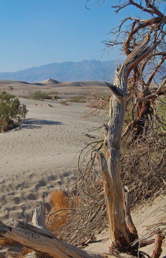 κοιλάδα άμμου αμμόλοφων &theta στοκ εικόνες με δικαίωμα ελεύθερης χρήσης