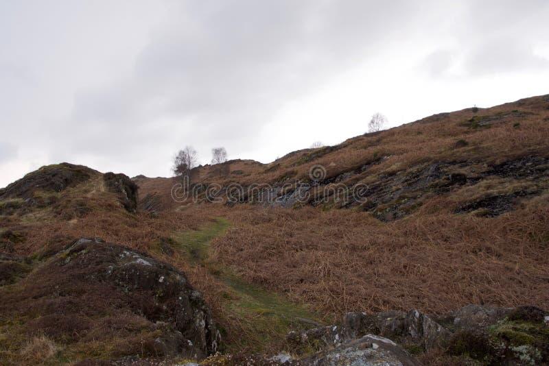 Κοιλάδα βαλτοτόπου: μικροί δύσκολοι απότομοι βράχοι και ένα ρεύμα στοκ φωτογραφία με δικαίωμα ελεύθερης χρήσης