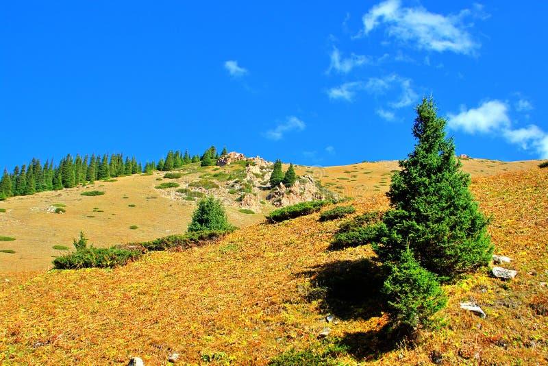 κοιλάδα βουνών στοκ εικόνα με δικαίωμα ελεύθερης χρήσης