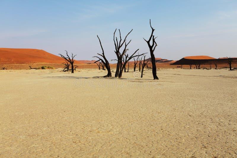 Download Κοιλάδα θανάτου στοκ εικόνες. εικόνα από προοπτική, ίζημα - 13183494