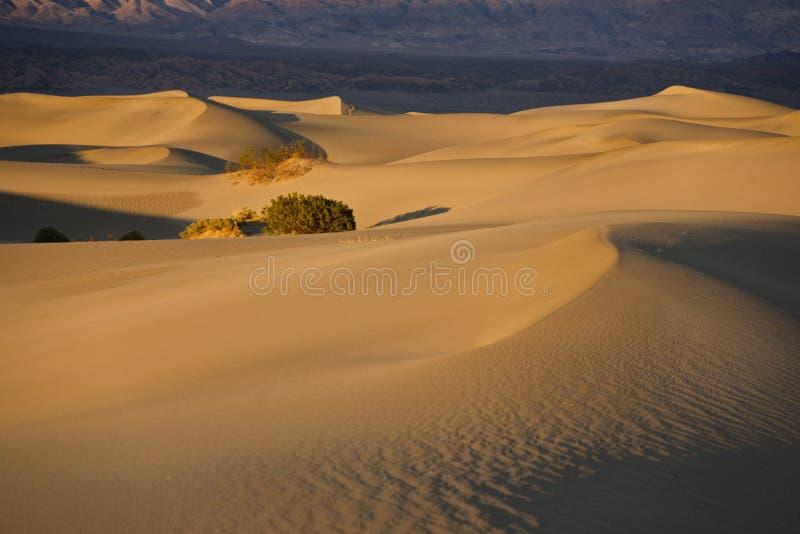 κοιλάδα θανάτου sandscape στοκ εικόνες με δικαίωμα ελεύθερης χρήσης