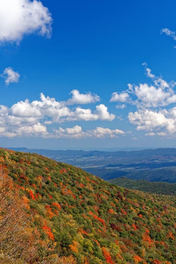 Κοιλάδα με τα δέντρα στα χρώματα πτώσης στοκ φωτογραφία